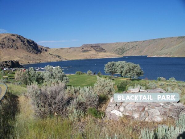 Blacktail_Park_Ririe_Reservoir_Idaho