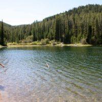 Little Girl walking down packsaddle Lake