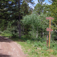 Packsaddle Lake National Forest Signs
