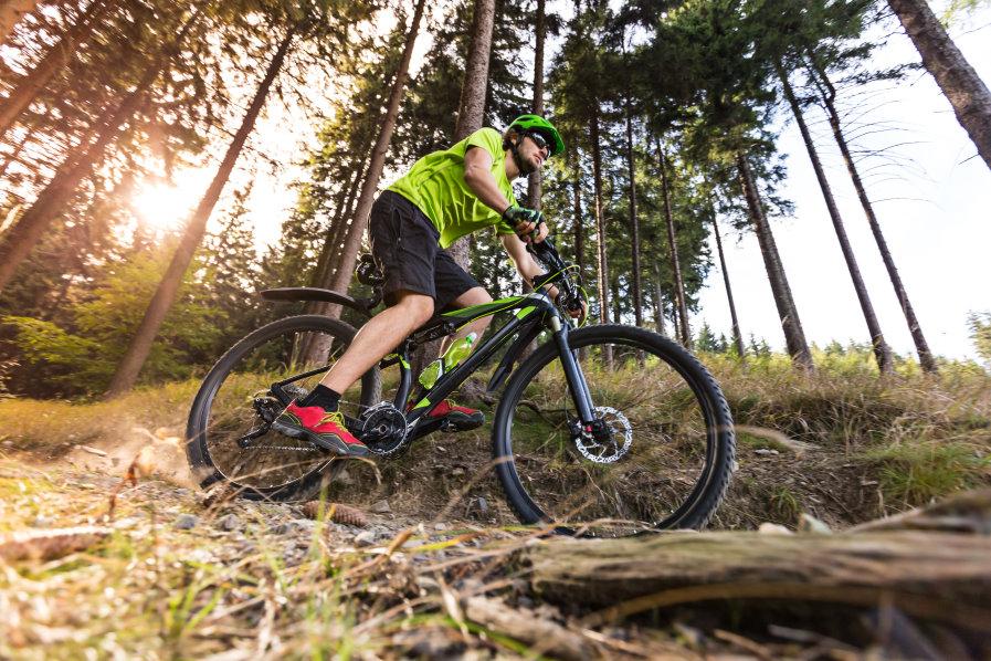 Mountain biker speeding through forest path.
